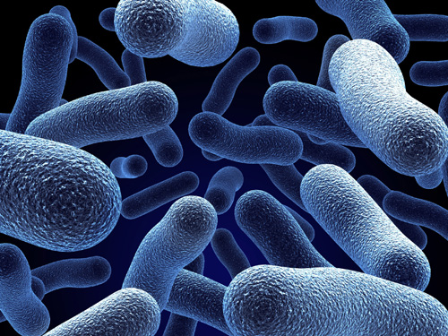 Legionnaires' disease cases have risen in 2017