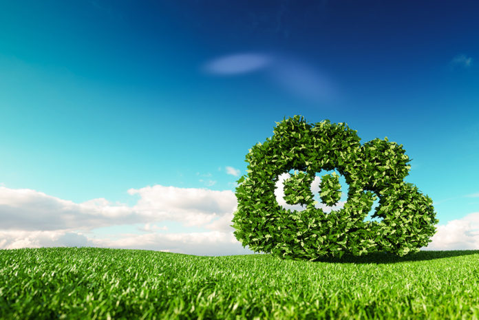 Fifty per cent of Cos emissions come from domestic heating, cooking and transport